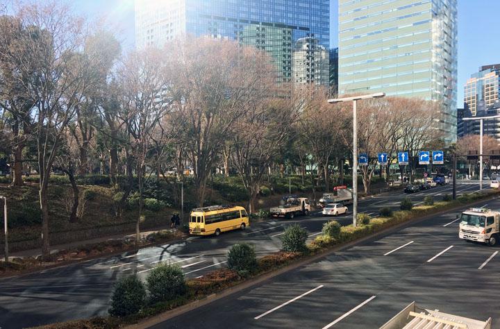 画像: 春はサクラや新緑が見事な中央公園