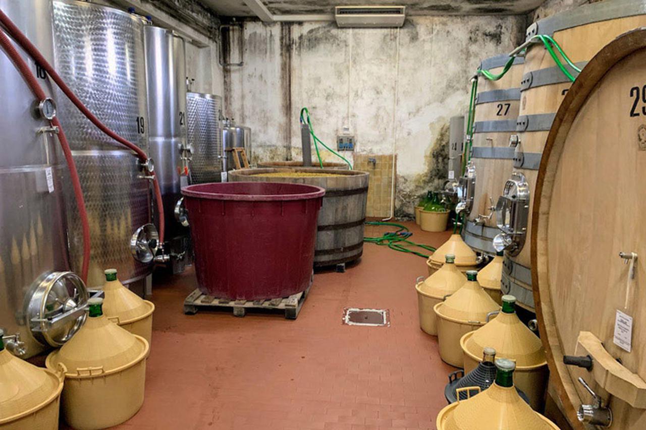 画像: ワイン醸造ではステンレスタンク、木桶、木樽、ビンなどが使われます(珍しく全て写っている)