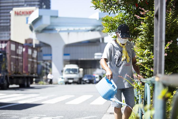 画像: 道路からの照り返しと猛暑でも、毎日の水やりで生き生きと植物は育つ