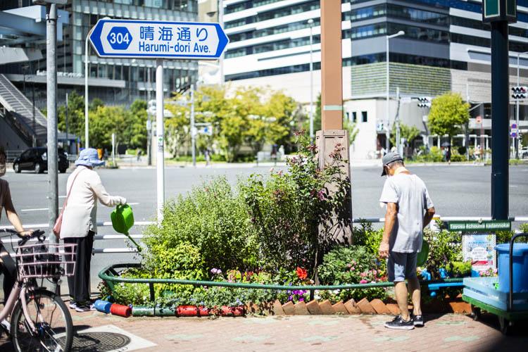 画像: たくさんの人が行き交う豊洲駅前交差点の花壇に水やりする豊洲商友会の大野恵子さんと豊洲自治会の高橋健一郎さん