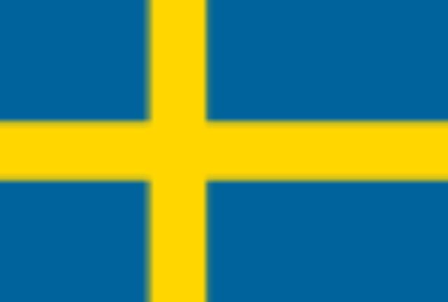画像: International Ring Fighting Arena(スウェーデン)