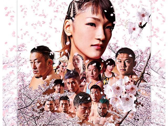 画像: RIZIN 2017 in YOKOHAMA - SAKURA --動画[無料]|GYAO!|バラエティ・スポーツ