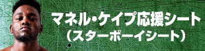 画像10: 各選手の応援シート絶賛発売中!