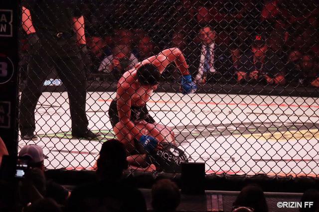 画像5: 堀口恭司、Bellatorバンタム級タイトルマッチを制し二大プロモーション同時制覇達成!