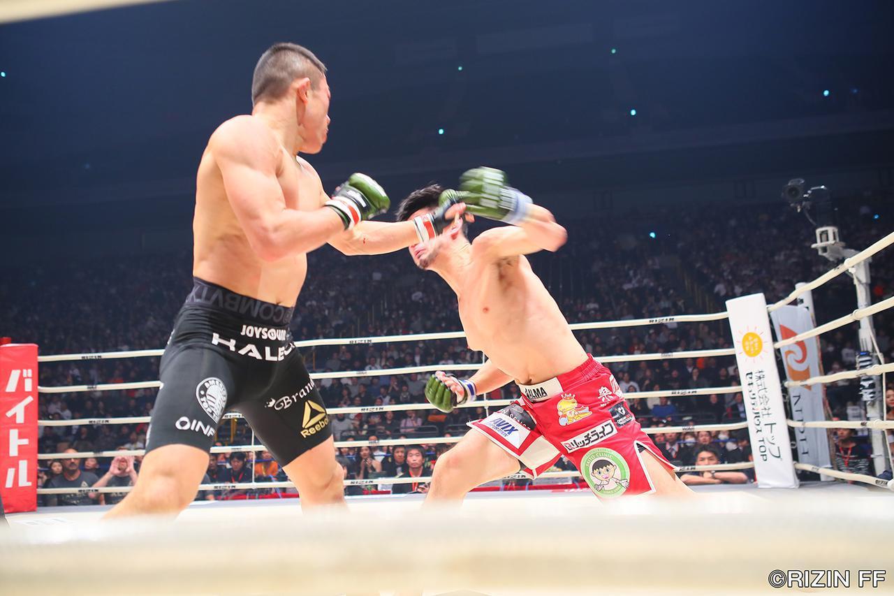 画像4: 「堀口恭司が石渡伸太郎をKOで下し、トーナメント優勝!」