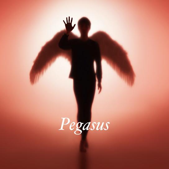 画像: Pegasus