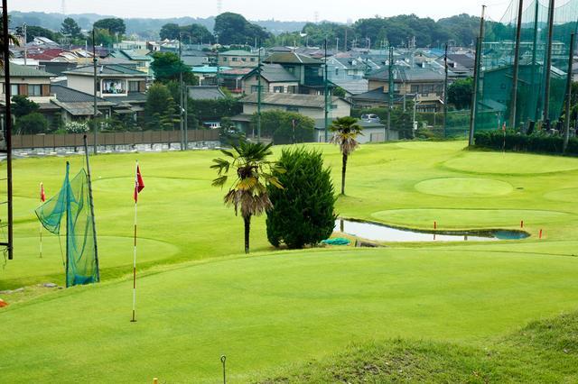 画像1: 湘南のゴルファーでも知らない人、いるんじゃない!?