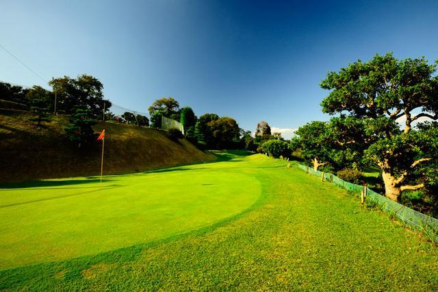 """画像: パープレーなら""""小技の達人""""認定!緑ゴルフコース - みんなのゴルフダイジェスト"""