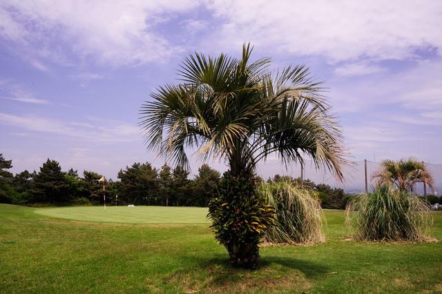 画像1: 景色とグリーンを楽しむならここに来よう