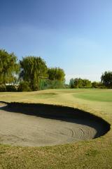 画像2: 私たちが生まれる前からずーっとココ、ゴルフ場だったんだ!