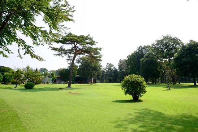画像1: 日帰りゴルフ旅行に行って来よう!