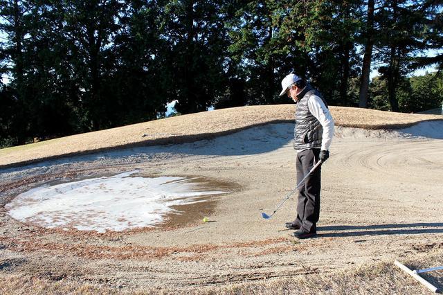 画像7: 駿河湾から春の風。沼津ゴルフクラブ
