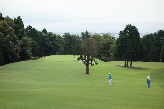 画像9: 麓の地形がそのまま! 大富士ゴルフクラブ