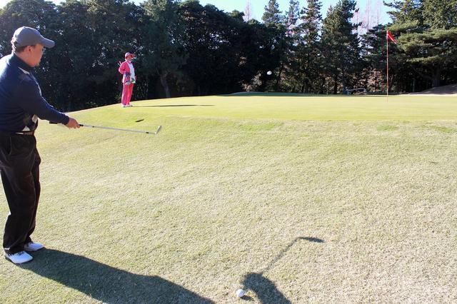 画像10: 駿河湾から春の風。沼津ゴルフクラブ