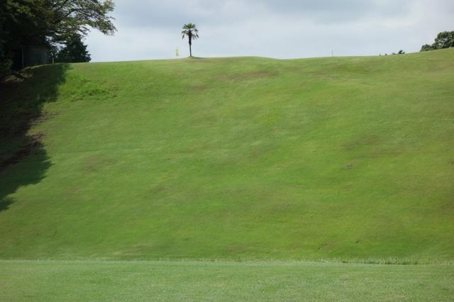 画像6: 麓の地形がそのまま! 大富士ゴルフクラブ