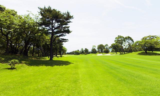 画像: 名門コースとの呼び名が高い www.grandfields-cc.com
