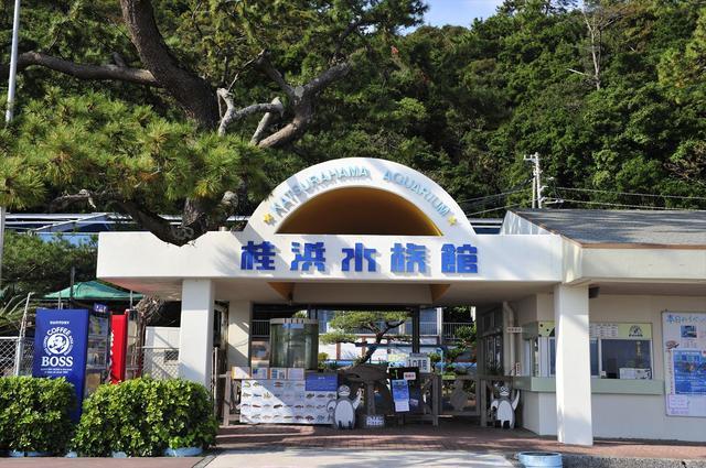 画像: 市内から車で20分ほど南へ。桂浜にある「桂浜水族館」には、ある生き物を見ることができます。 katurahama-aq.jp