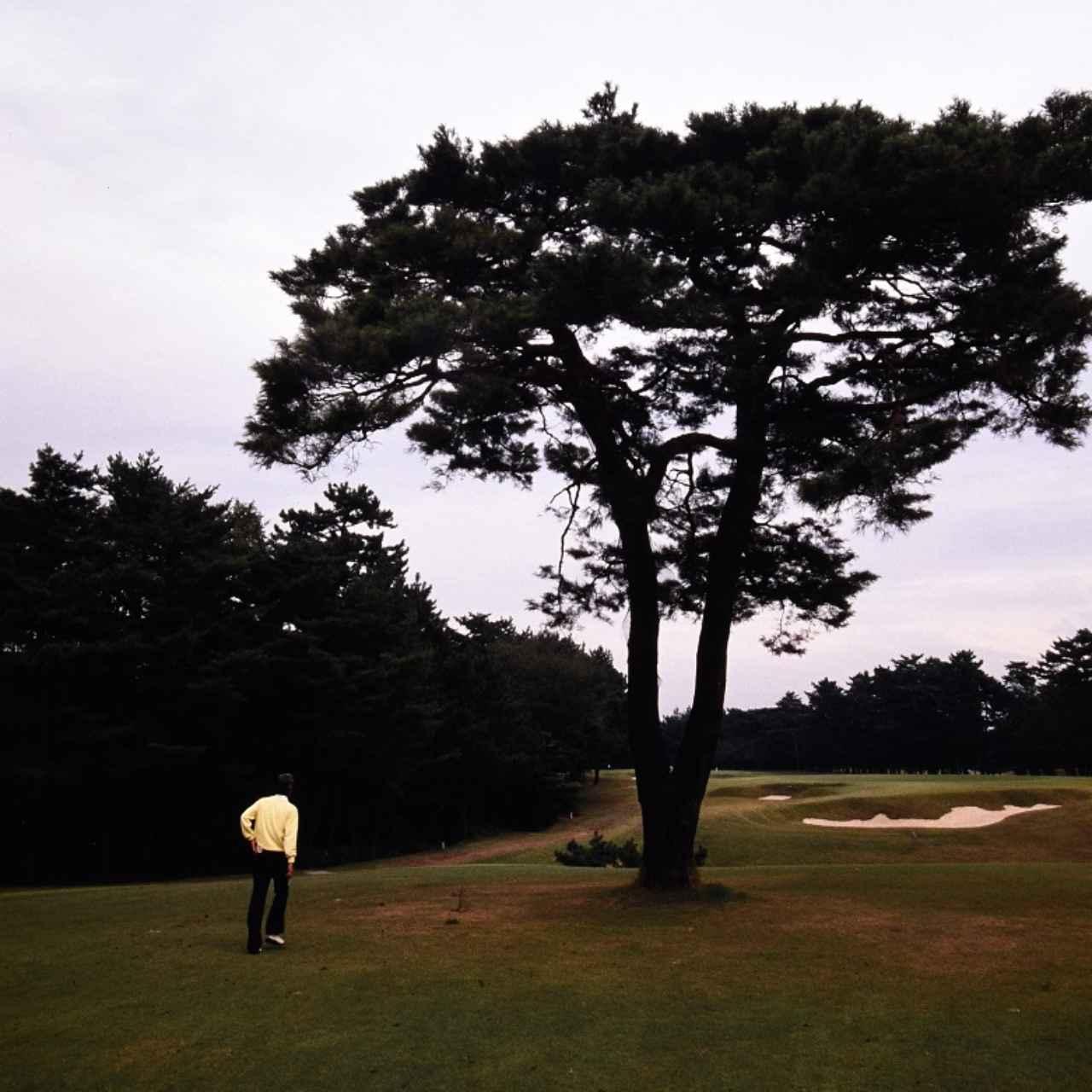画像2: 大きなグリーンは上級者ほど乗せづらい。 アマ・ゴルフの世界 中部銀次郎「広野を往く」⑤