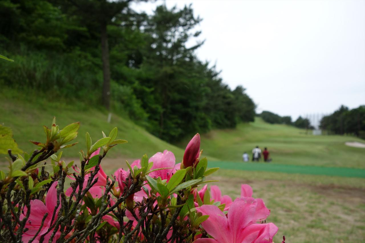 画像: 葉山パブリックGC  神奈川県三浦郡葉山町上山口2800 9H・1479Y・P30