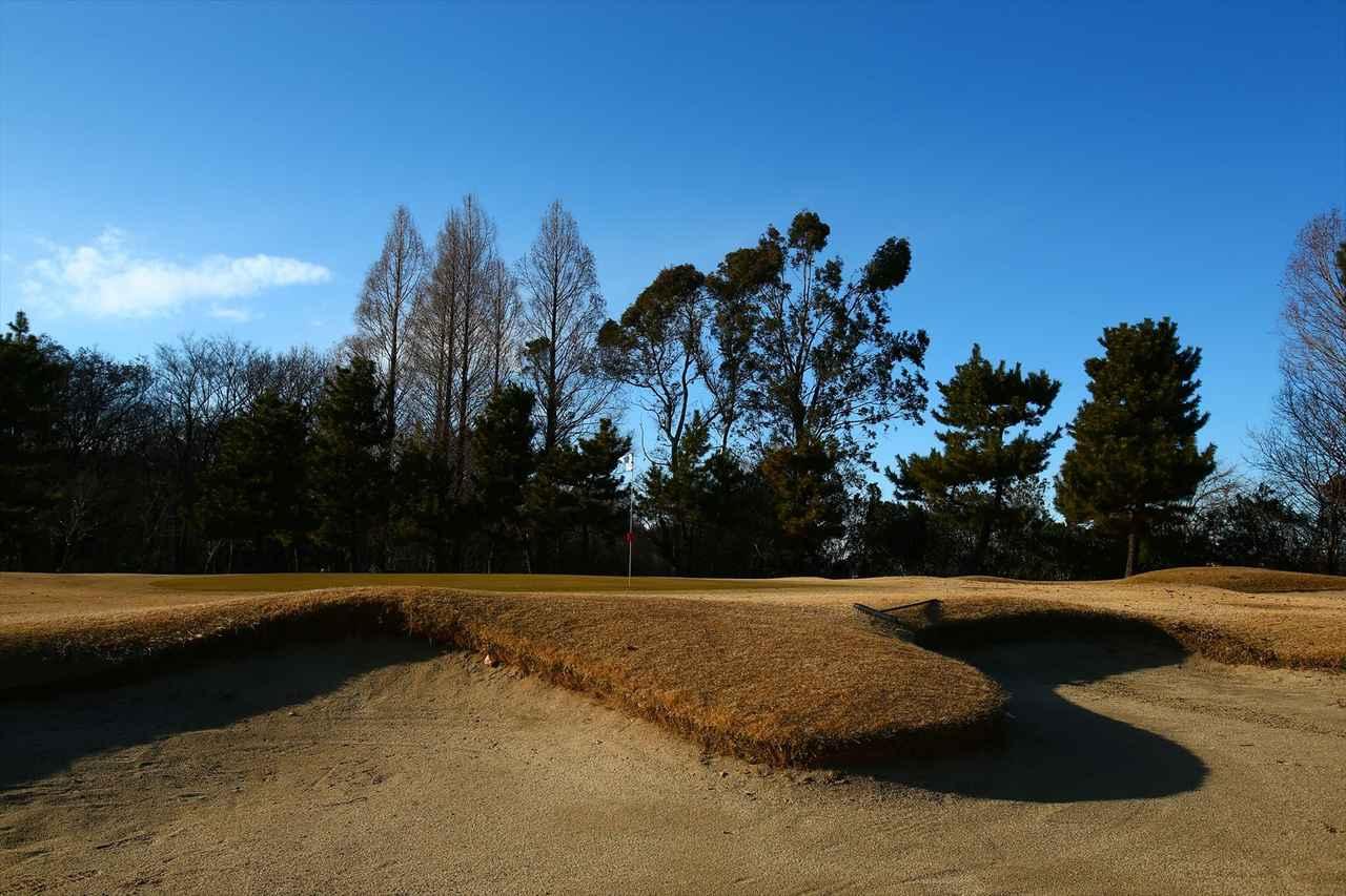 画像: 浦和ゴルフ倶楽部 埼玉県さいたま市桜区新開3-13-1 大久保昌設計の林間コース。