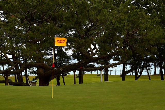 画像1: 本州最西端の港町・下関紀行【前編・銀のゴルフを育てた街】
