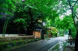 画像: 上野・伊豆栄「梅川亭」