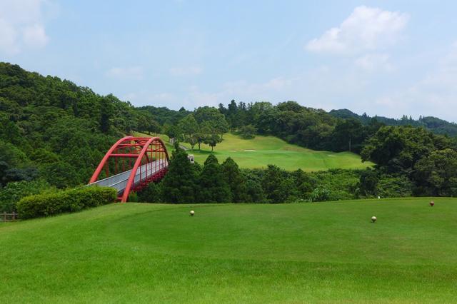 画像: 名物の8th 195 y Par3 。グリーンは砲台になっているので、はずすとアプローチが難しい minayoshidai-golf.jp