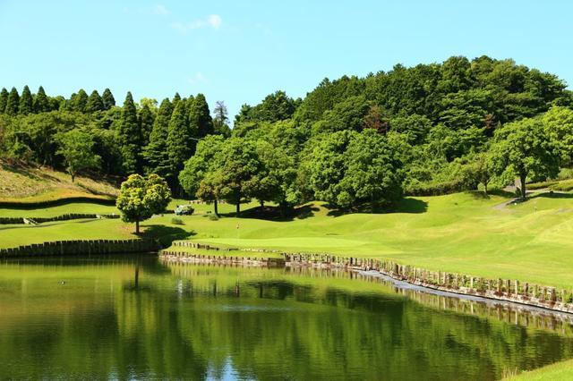 画像: グリーンの左奥まで池がまわりこみ、右奥はボールがこぼれやすくなっている6番パー3