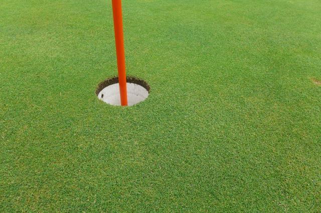画像: まさに緑の絨毯。芝がしっかり詰まったグリーンは最高の転がり