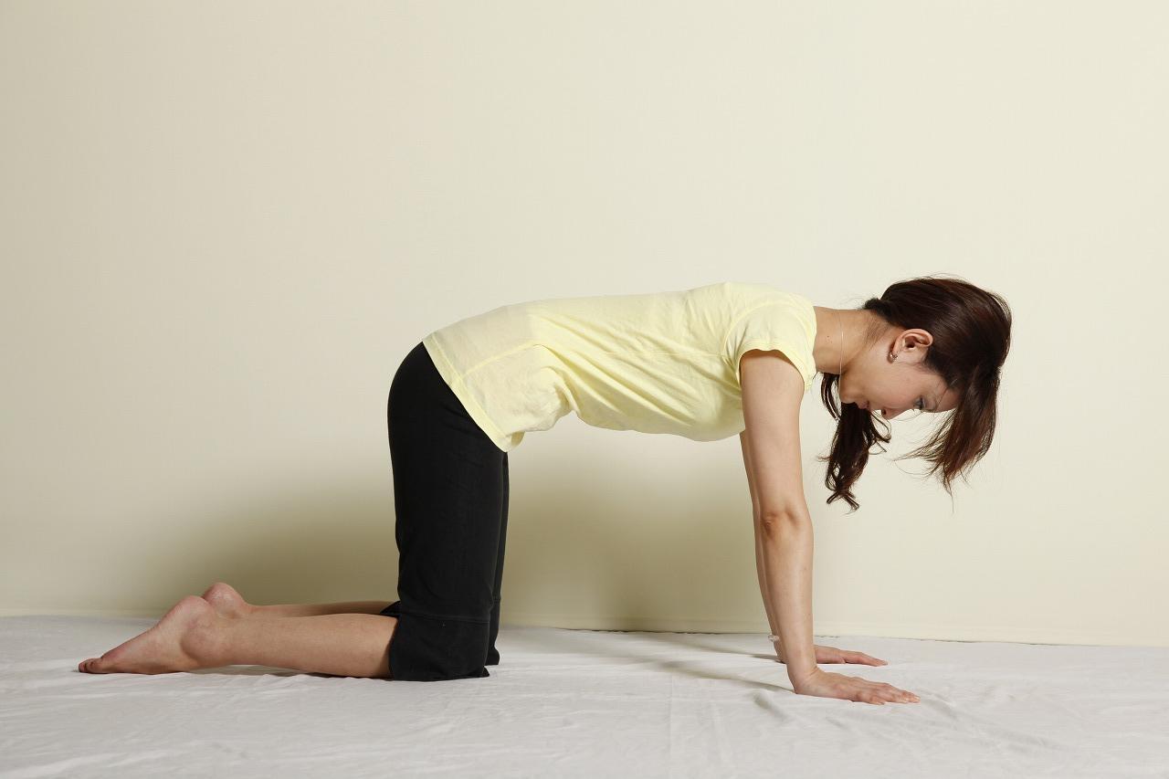画像: 1・手首は肩の真下、ひざは腰骨の真下