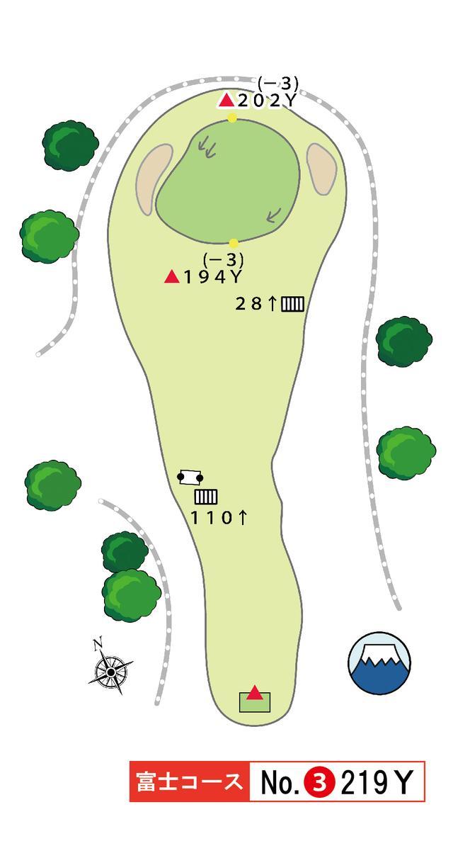 画像: 富士コース 3番 219Y