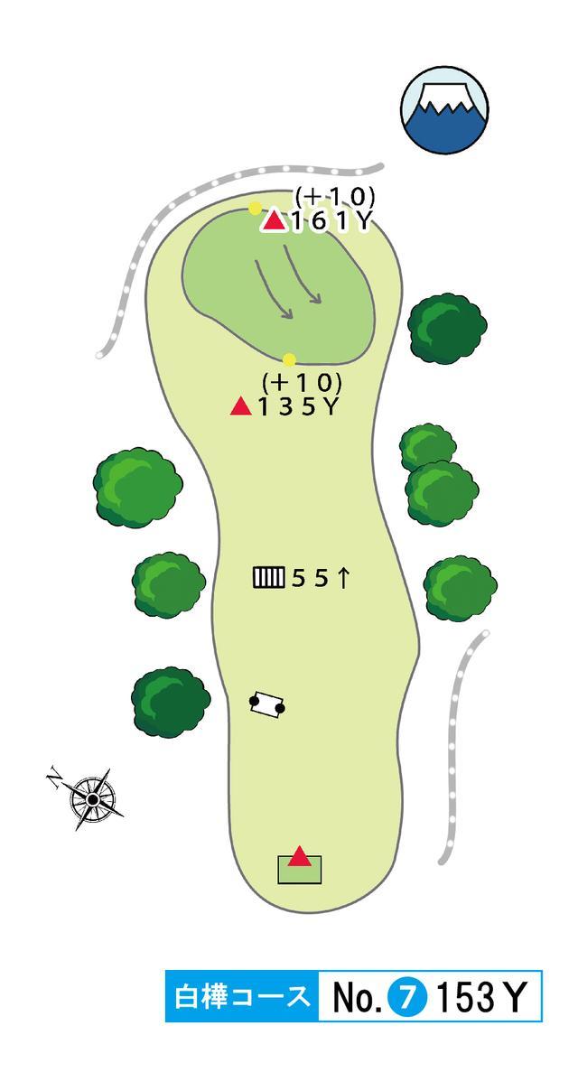 画像: 白樺コース 7番 153Y