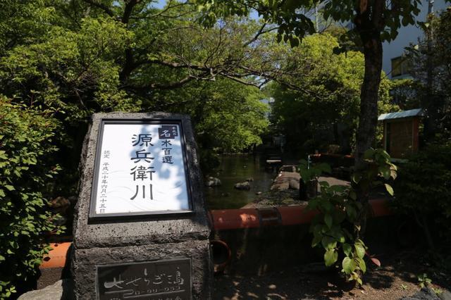 画像: 名水百選「源兵衛川」