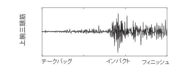 画像2: 筋肉の情報は波形となって表れる