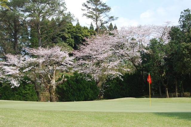 画像: 南九州カントリークラブ 鹿児島・熊本阿蘇のゴルフ場