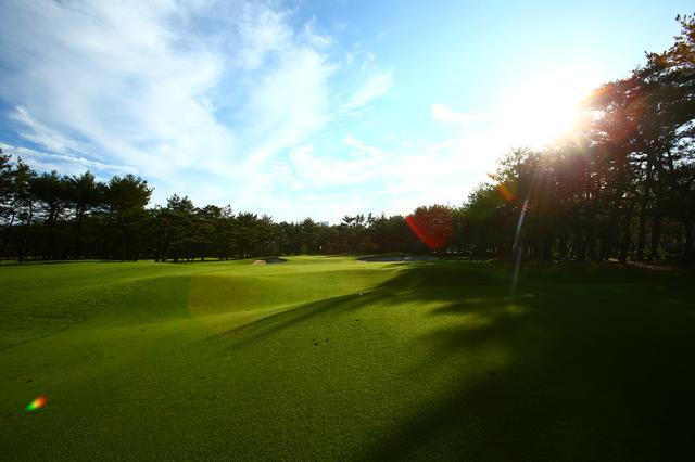 """画像: 【目指せゴルフの雑学王】ツアーでおなじみのリゾートコース""""フェニックスカントリークラブ"""" - みんなのゴルフダイジェスト"""