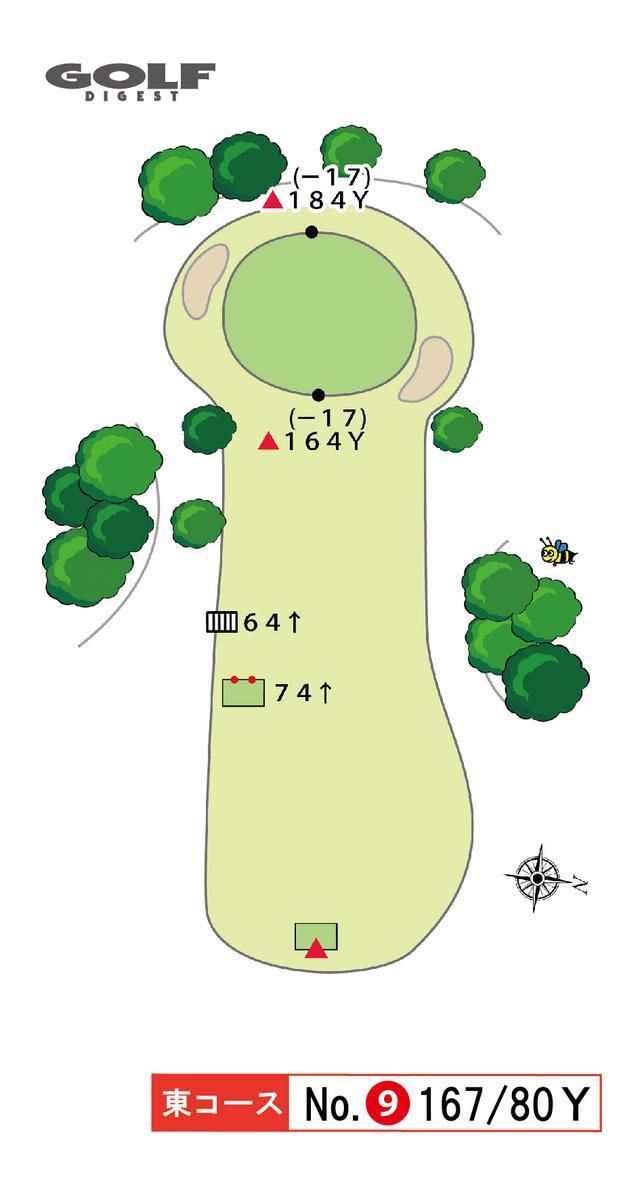 画像2: 東コース 9番 167Y/80Y