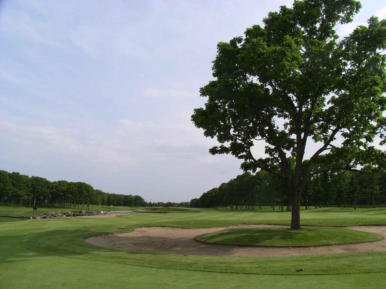 """画像: 【目指せゴルフの雑学王】ニクラスの戦略性をふんだんに味わえる""""北海道クラシックゴルフクラブ"""" - みんなのゴルフダイジェスト"""