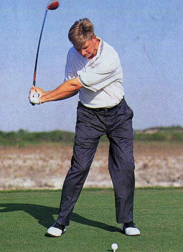 画像5: 【南アのゴルフ遺伝子Vol.4】アーニー・エルスが目指したもの