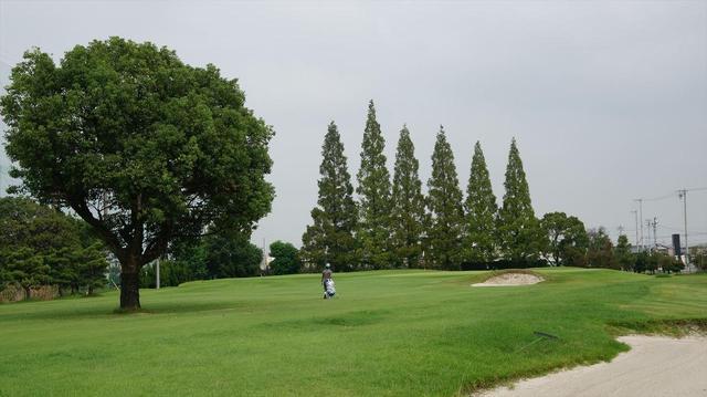 画像1: 中部大会 ニッケ弥冨ゴルフコース(愛知) 9月開催 6名通過