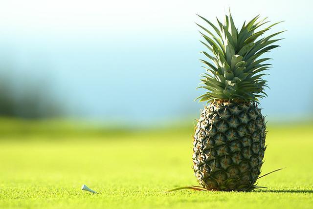 画像: 今週はショッピングカートがティーマーカーに!! PGAツアーのちょっとした魅力? - PGAツアー