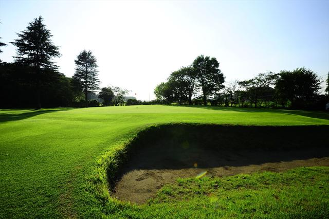 画像3: 本格ベントを手軽に体験! 明野ゴルフクラブ【ショートコースサーベイ】