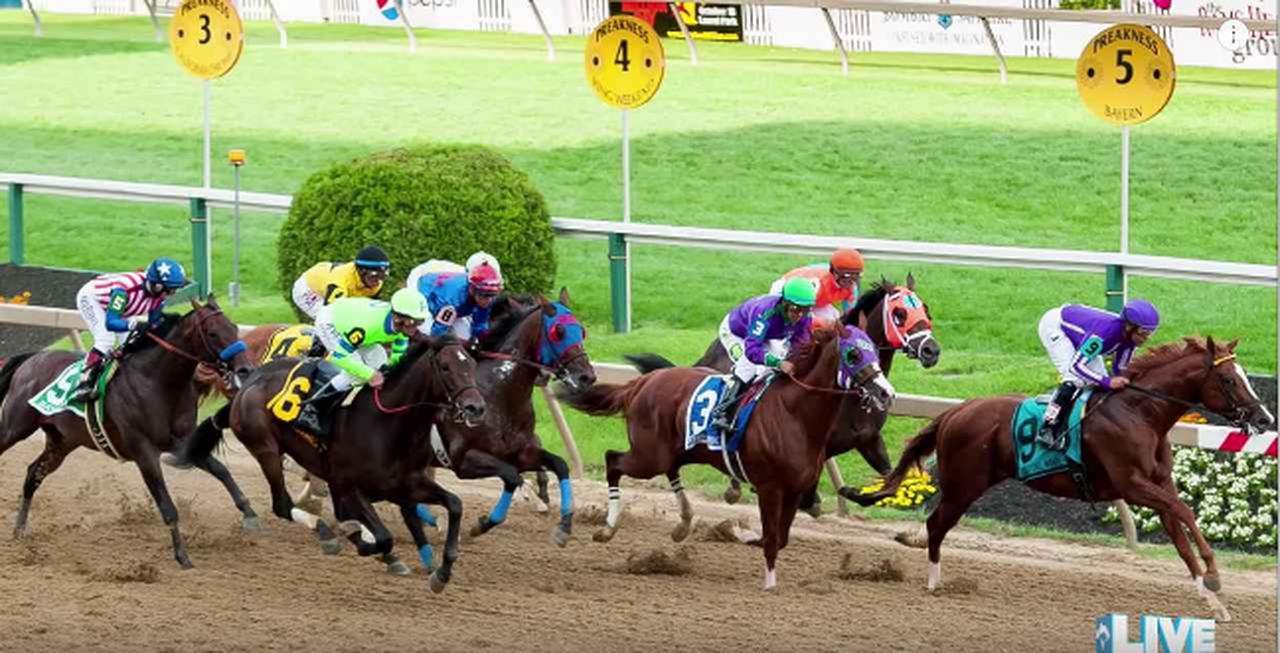 画像1: 混み合ったラストの直線。どれが馬券を買った馬⁉︎