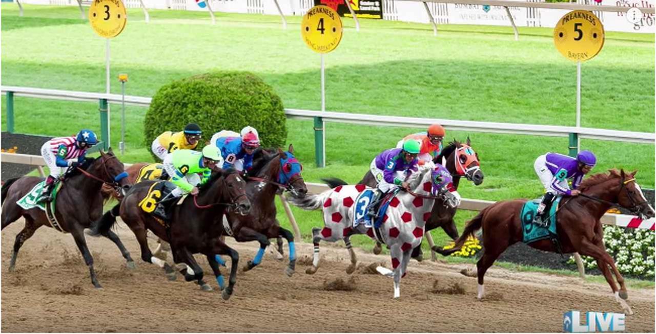画像2: 混み合ったラストの直線。どれが馬券を買った馬⁉︎