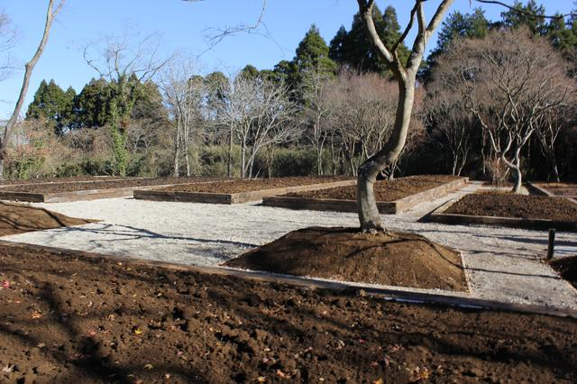 画像: 現在は土壌だけだが、ここが貸農地となる