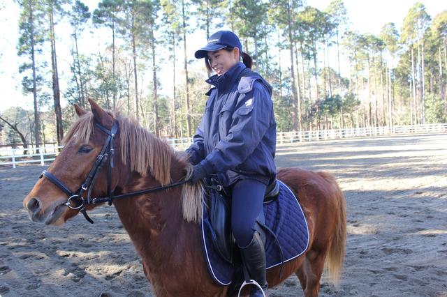 画像: レベル別に乗馬方法も変えることが可能