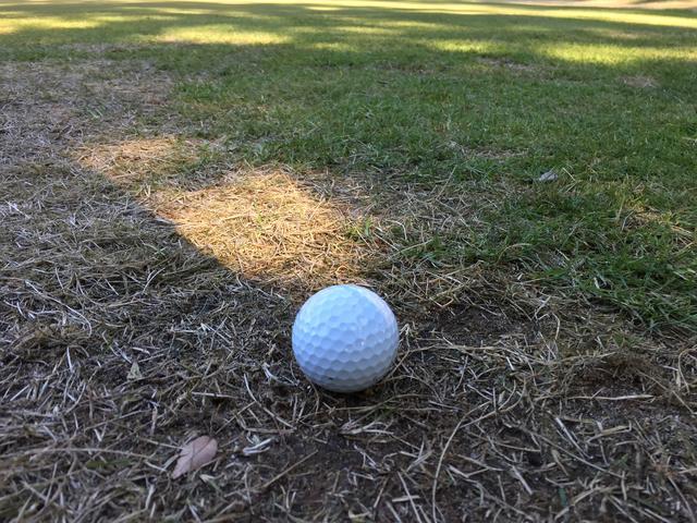 画像: グリーン周りの薄い芝。「何番」で打つのが正解ですか?