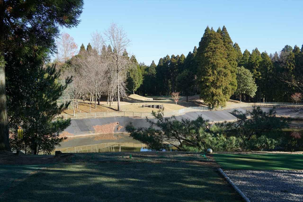 画像: JR外房線「土気駅」近くのゴルフパートナー千葉練習場はベントグリーンの林間ショートコースコース 。写真は池越えの3番ホール 210ヤード パー3