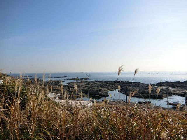画像: 公園内から相模湾が一望できる