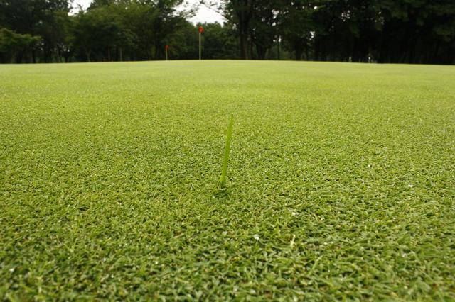 画像: 【知っておきたいルール】「芝カスだと思ったんだけど……」これって何打罰? - みんなのゴルフダイジェスト